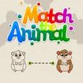 Match The Animal